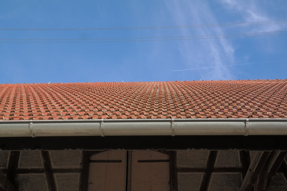 The Importance of Cleaning and Maintaining Gutters